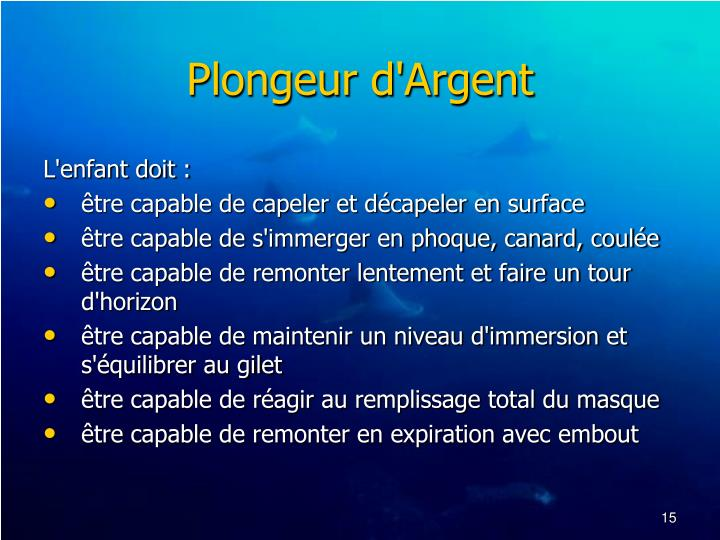 Plongeur d'Argent