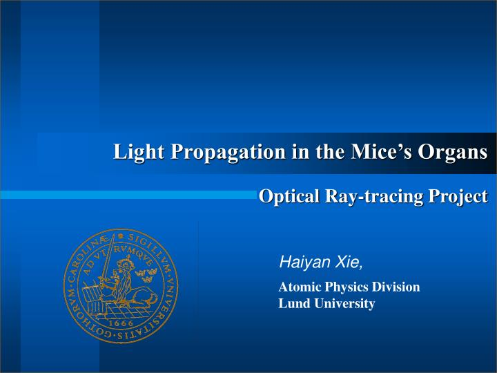 light propagation in the mice s organs optical ray tracing project