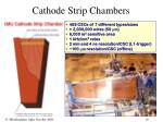 cathode strip chambers
