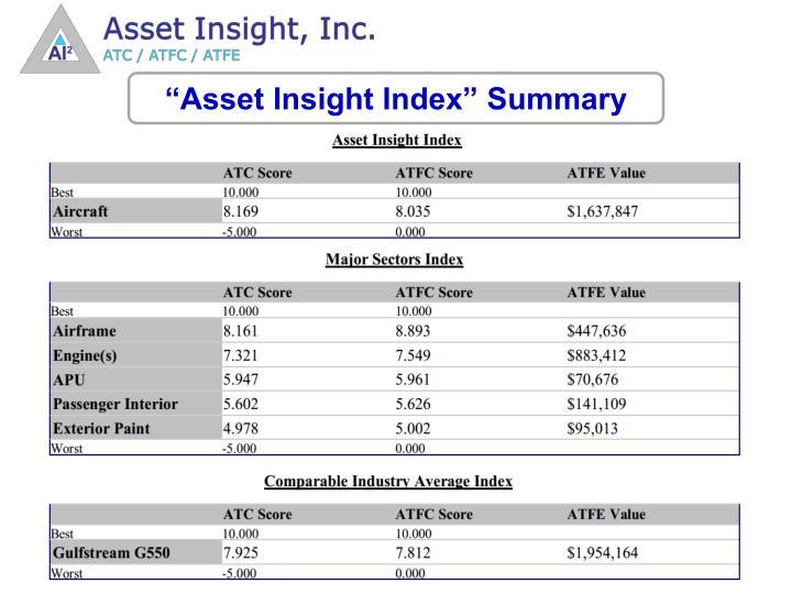 """""""Asset Insight Index"""" Summary"""