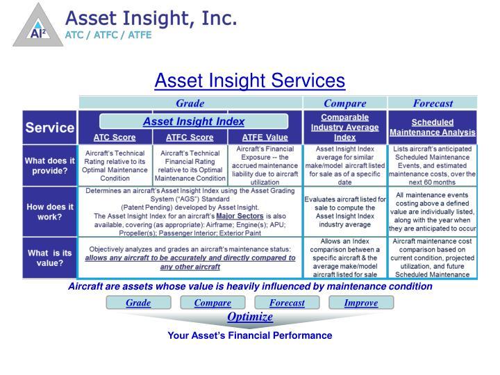 Asset Insight Services