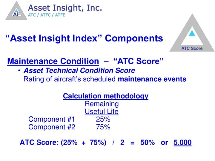 """""""Asset Insight Index"""" Components"""
