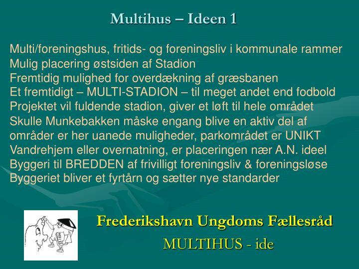 Multi/foreningshus, fritids- og foreningsliv i kommunale rammer