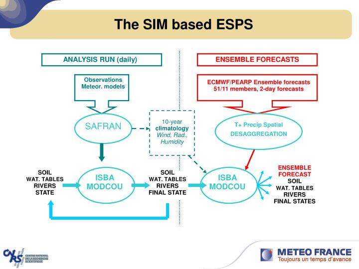 The SIM based ESPS