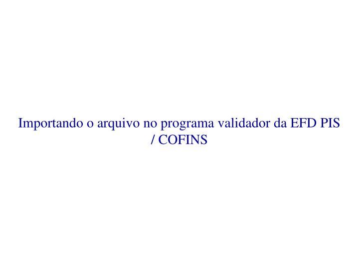 Importando o arquivo no programa validador da EFD PIS / COFINS