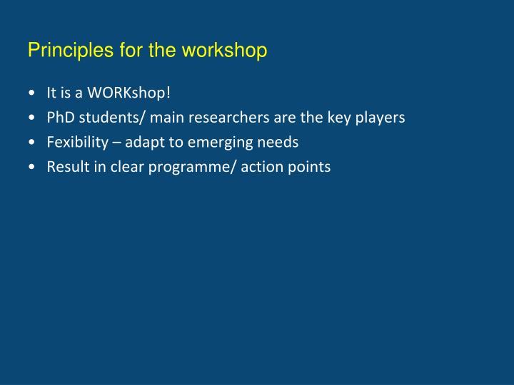 Principles for the workshop