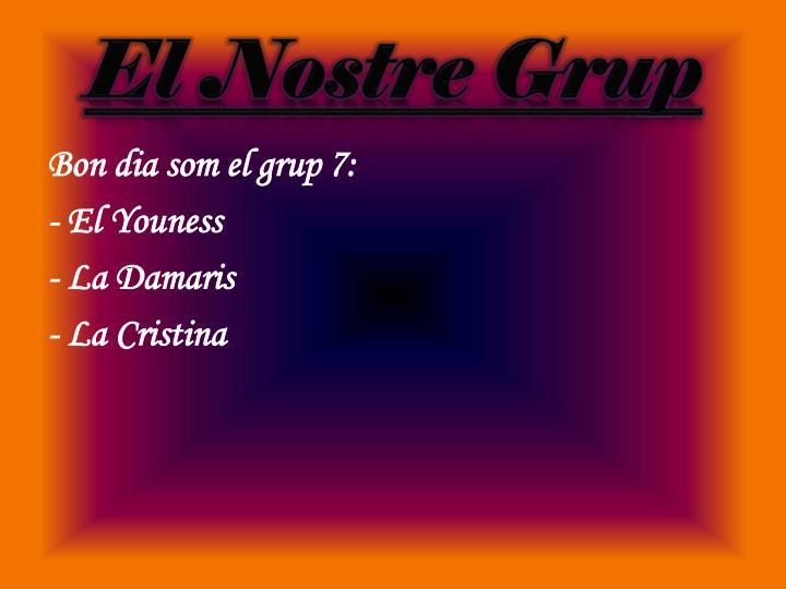 El nostre grup