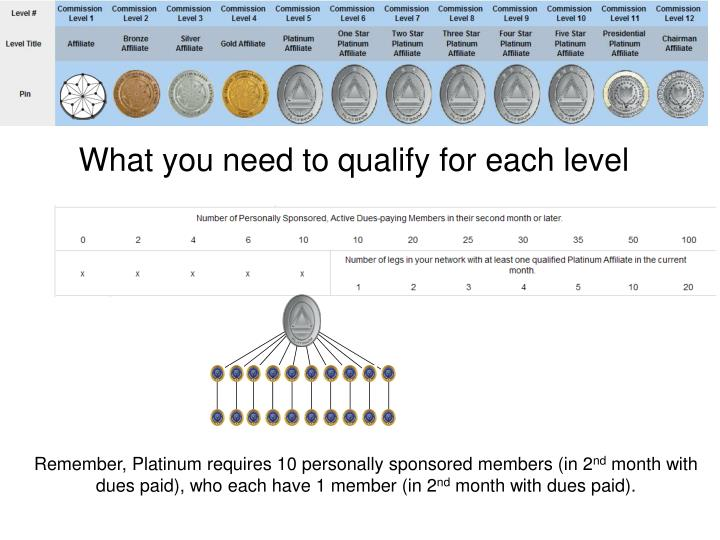 What you need to qualify for each level