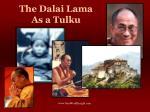 the dalai lama as a tulku