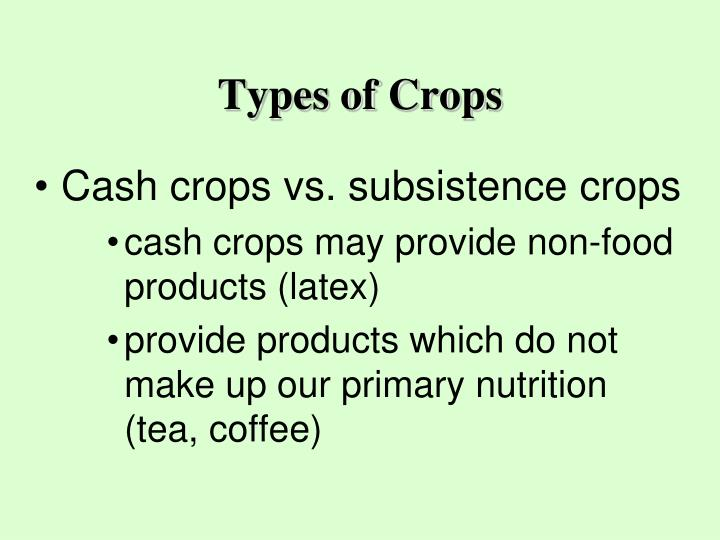 Types of Crops