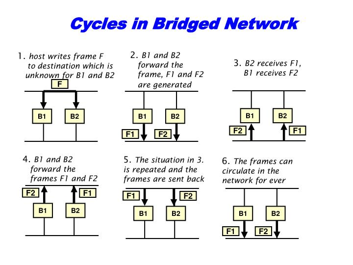 Cycles in Bridged Network