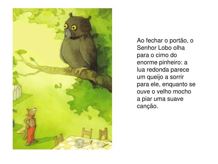 Ao fechar o portão, o Senhor Lobo olha para o cimo do enorme pinheiro: a lua redonda parece um queijo a sorrir para ele, enquanto se ouve o velho mocho a piar uma suave canção.