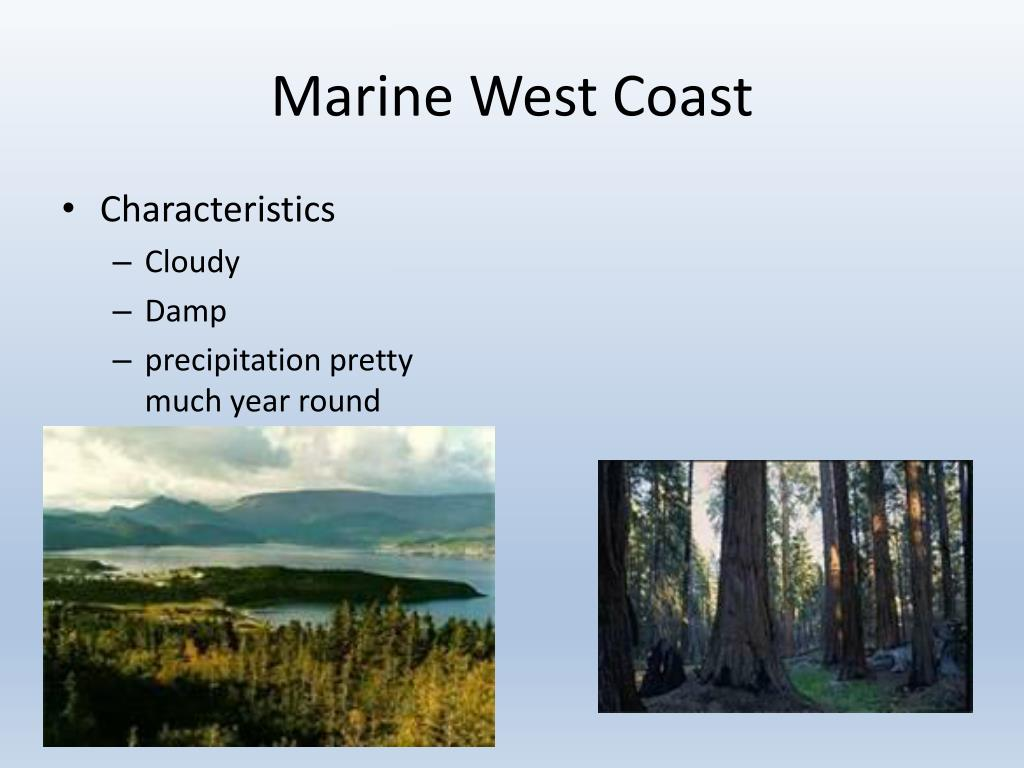 PPT - World Climates PowerPoint Presentation, free ...