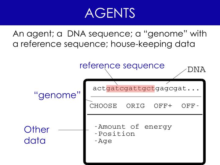reference sequence