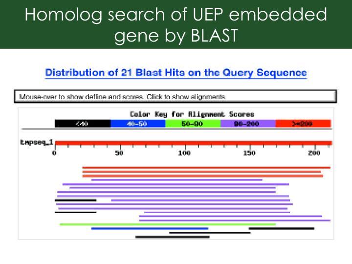 Homolog search of UEP embedded gene by BLAST