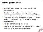 why squirrelmail
