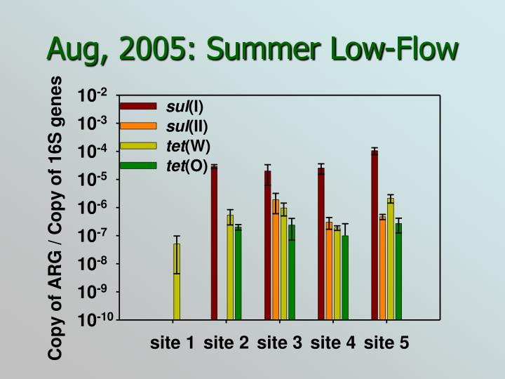 Aug, 2005: Summer Low-Flow