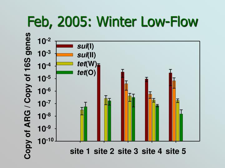 Feb, 2005: Winter Low-Flow