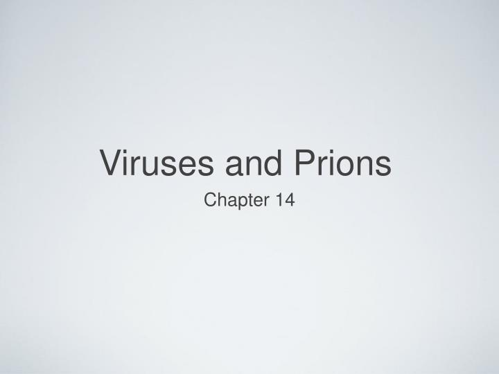 viruses and prions n.