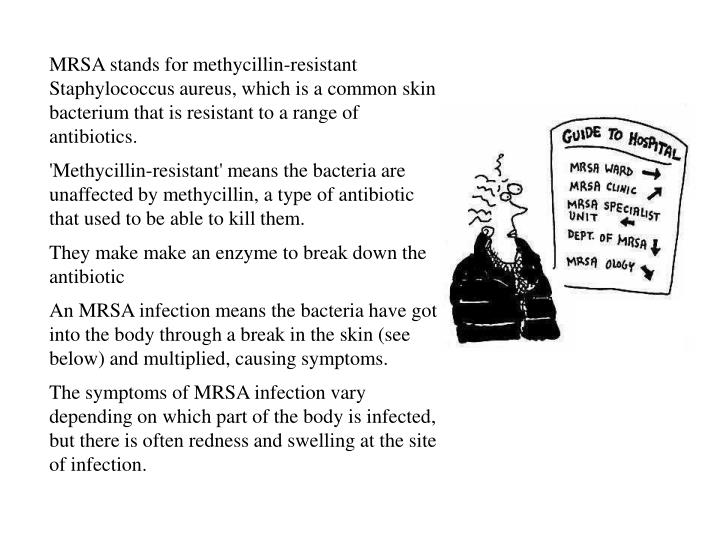 MRSA stands for methycillin-resistant Staphylococcus aureus, which is a common skin bacterium that i...