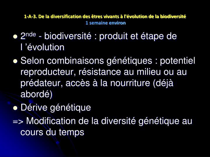 1-A-3. De la diversification des êtres vivants à l'évolution de la biodiversité