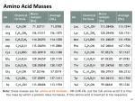 amino acid masses