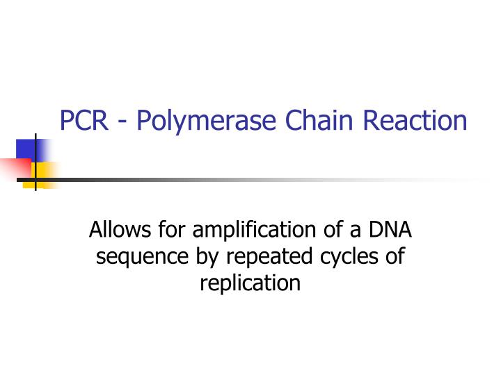 pcr polymerase chain reaction n.