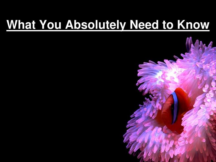 what you absolutely need to know n.