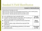 standard 4 field identification