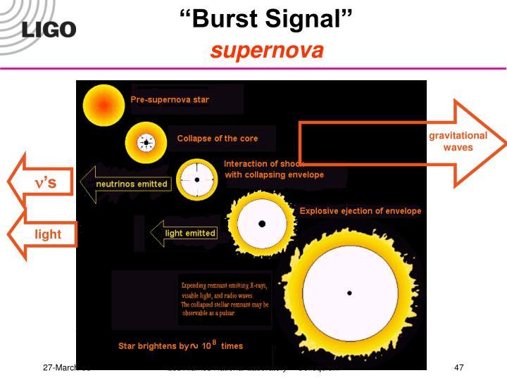 """Burst Signal"""