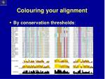 colouring your alignment1