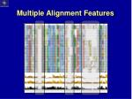 multiple alignment features1