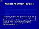 multiple alignment features10