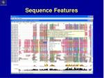 sequence features