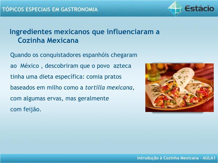 Ingredientes mexicanos que influenciaram a Cozinha Mexicana