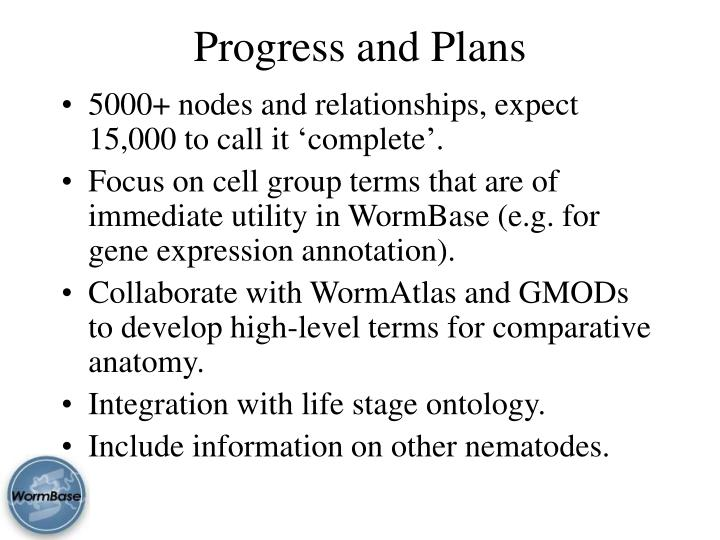 Progress and Plans