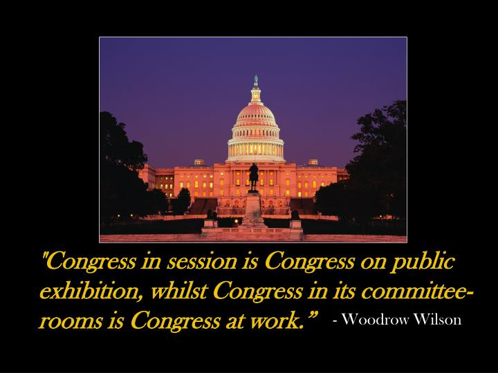 """Congress in session is Congress on public exhibition, whilst Congress in its committee-rooms is Congress at work."""