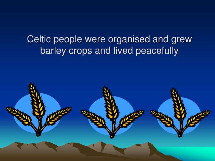 Celtic people were organised and grew barley crops and lived peacefully