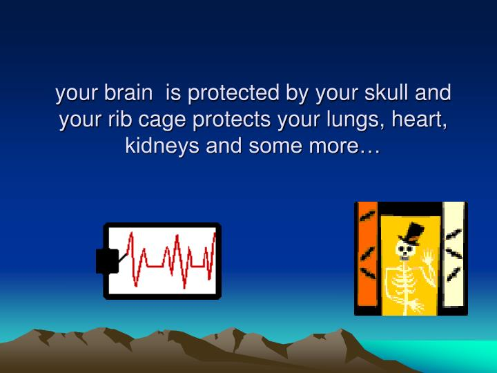 your brain  is protected by your skull and your rib cage protects your lungs, heart, kidneys and some more…