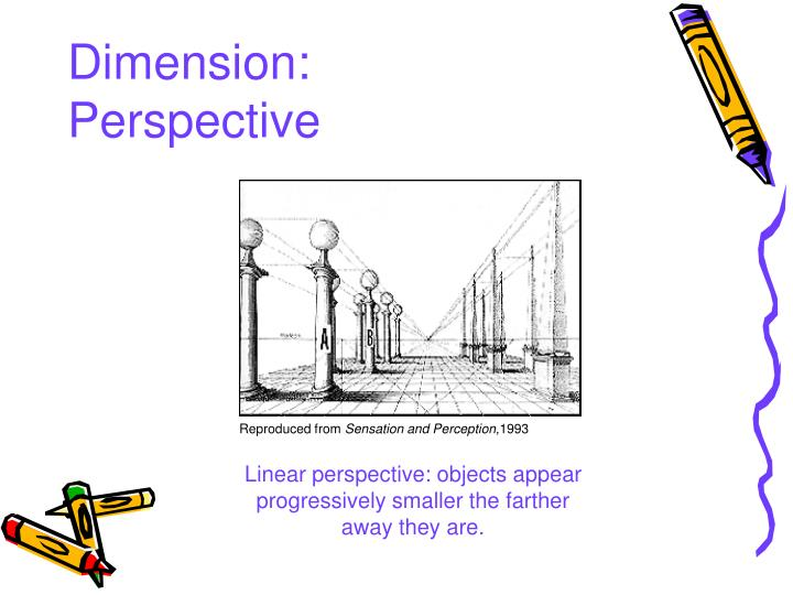 Dimension: Perspective