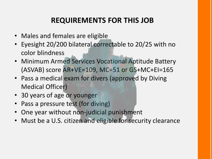 REQUIREMENTS FOR THIS JOB