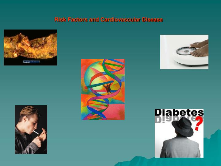 risk factors and cardiovascular disease n.