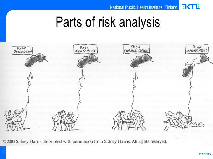 Parts of risk analysis