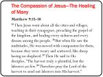 the compassion of jesus the healing of many