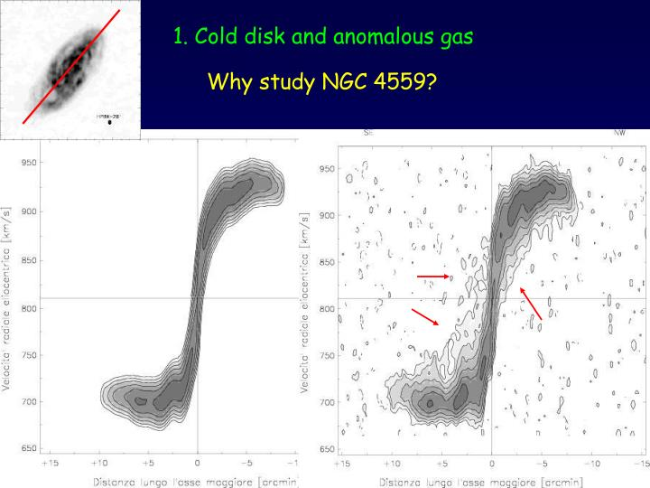 1. Cold disk and anomalous gas