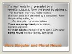more singular and plural nouns1