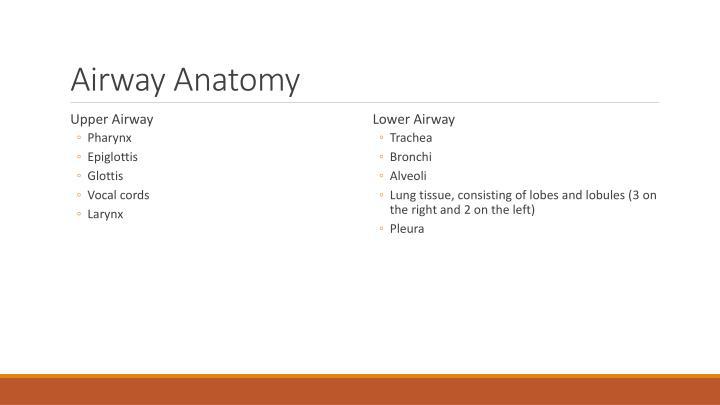 Ppt Basic Airway Powerpoint Presentation Id6401014
