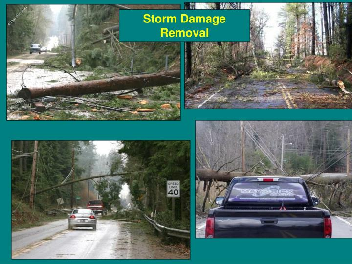 Storm Damage Removal