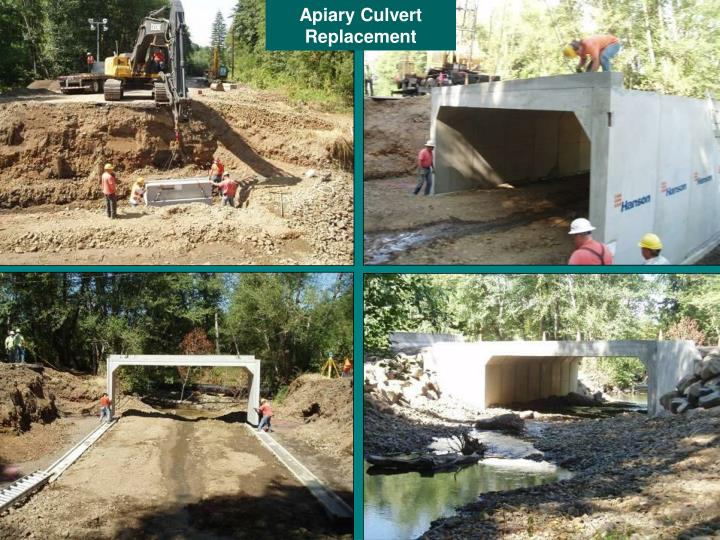 Apiary Culvert Replacement