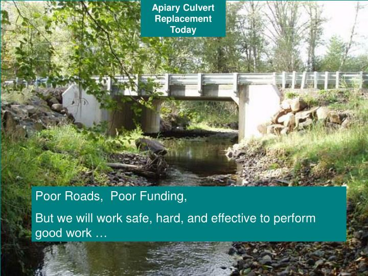 Apiary Culvert Replacement Today